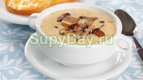 Сырный суп пюре с грибами и специями