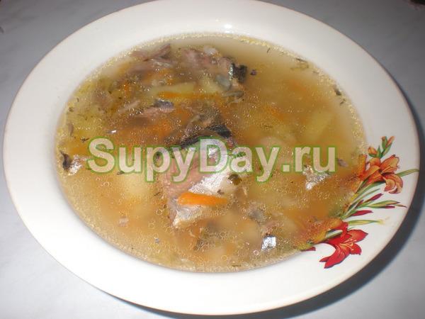 суп из консервированных томатов рецепт с фото