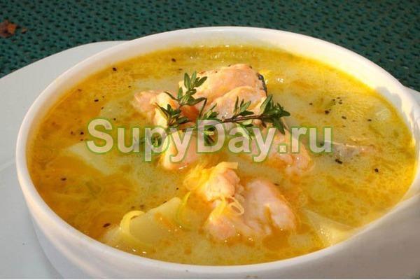 Суп из лосося со сливками с луком пореем