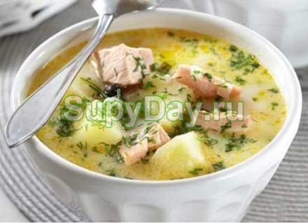 Суп из лосося со сливками от шефа повара финского консульства