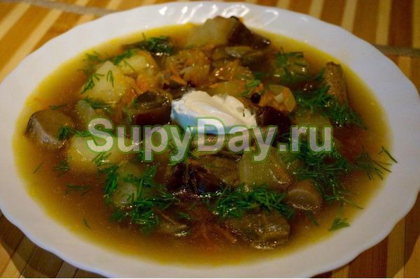 Рецепт супа из грибов подберезовиков