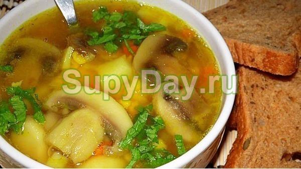 Суп из куриной грудки «Грибник в лесу»