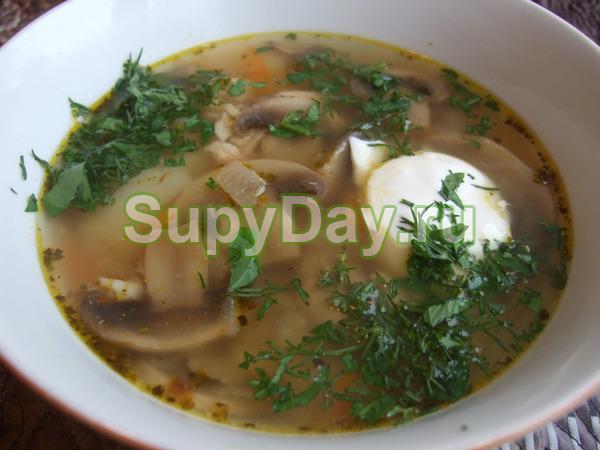 Суп с боровиками на мясном бульоне