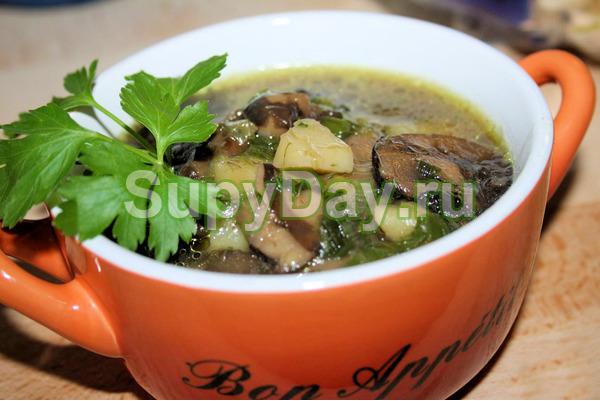 Суп из свежих луговых опят с гречкой и курочкой