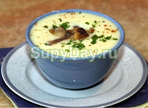 Сливочный крем – суп с осенними опятами