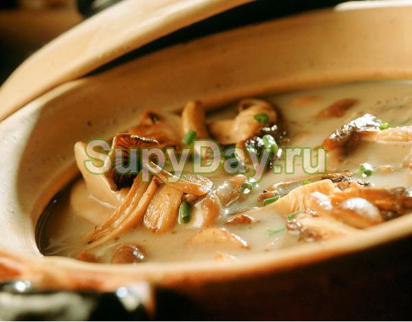 Сырный суп с опятами – праздник вкуса