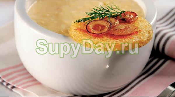 Сырный крем суп из сельдеереем