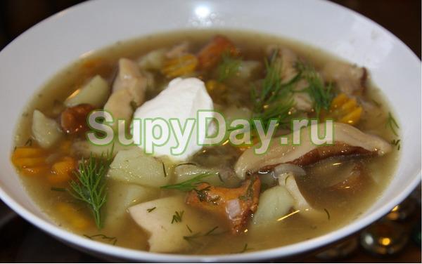 Грибной суп с мясом