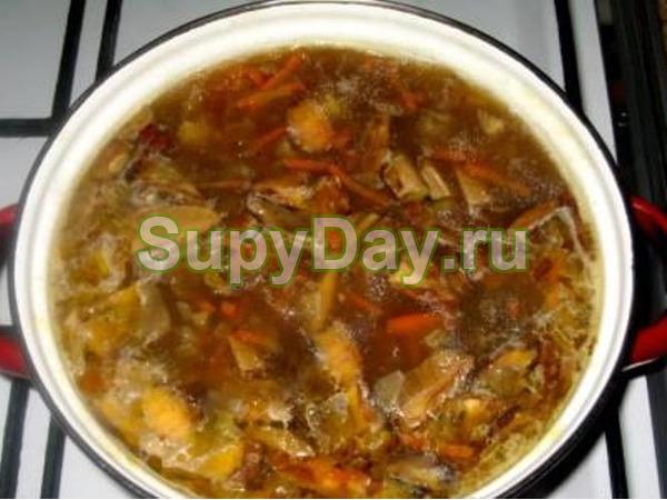 Суп из сушёных белых грибов со спагетти