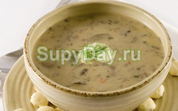 Суп-пюре из белых сушёных грибов