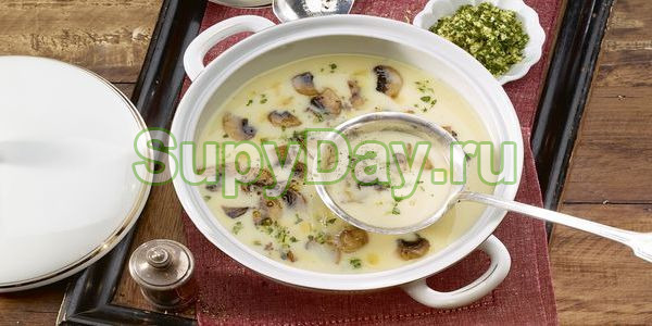 Суп из белых сушёных грибов и сыра