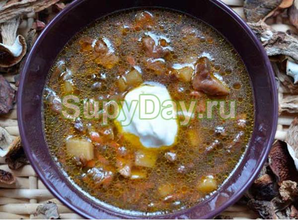 Суп с белыми сушёными грибами в мультиварке