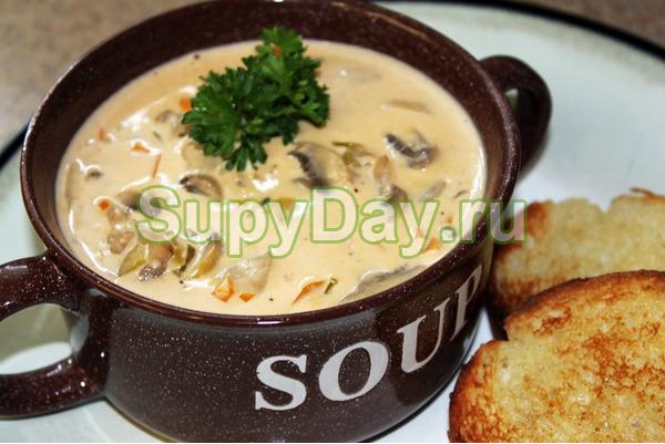 суп из сушеных рыжиков