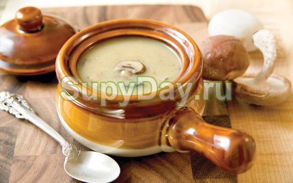 Нежный грибной суп с цуккини в горшочке