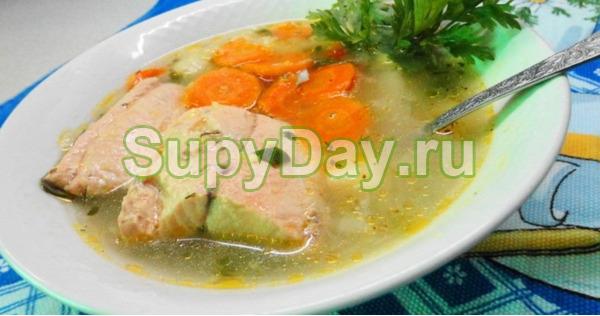 Суп из консервированной горбуши и плавленого сыра