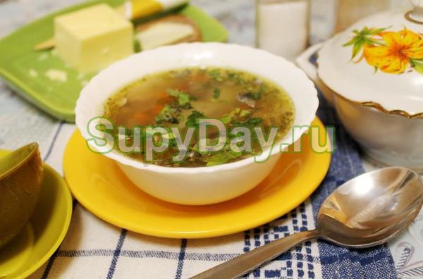 Суп из консервированной горбуши с добавлением помидор