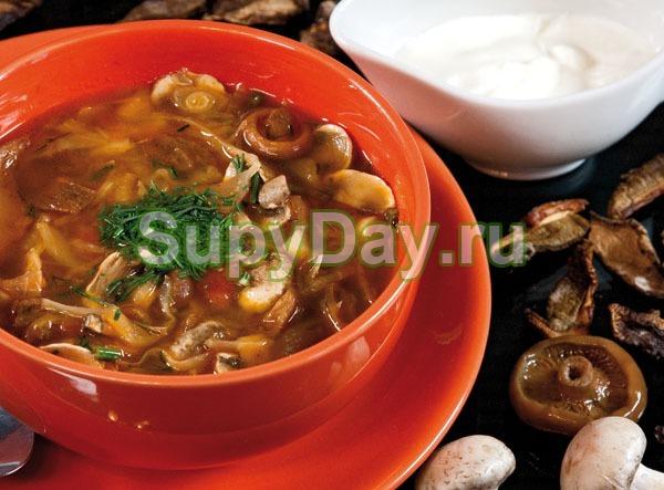 Суп солянка с грибами «Экономный»