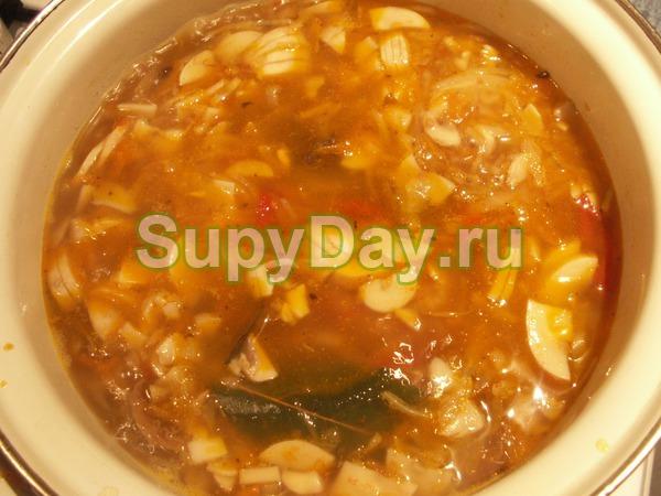 Грибная солянка без мяса со свежей капустой