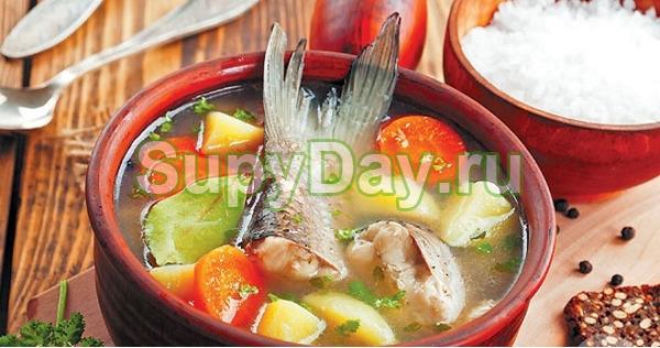 Суп из головы и хвоста горбуши