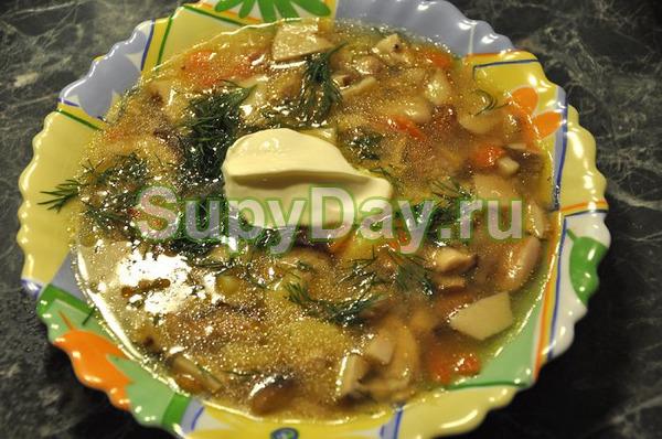 Грибовница - суп из замороженных белых грибов