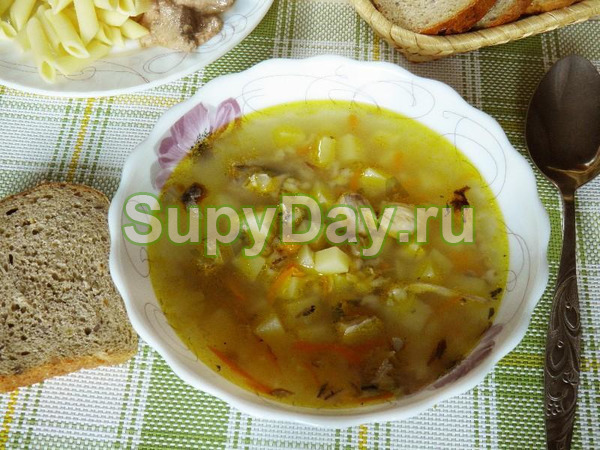 Рыбный суп из консервов горбуши с манной крупой