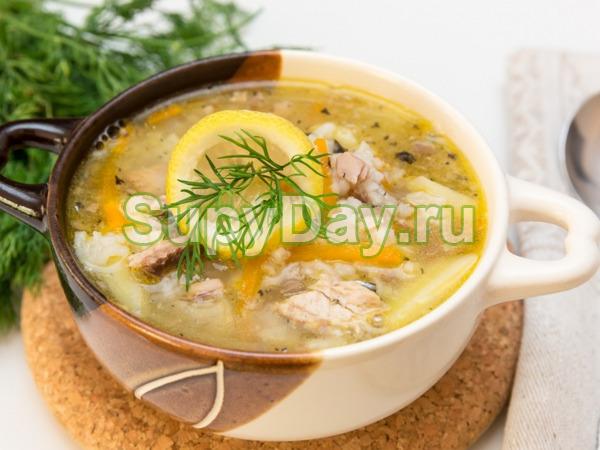 Рыбный суп из консервов горбуши и томатной пасты