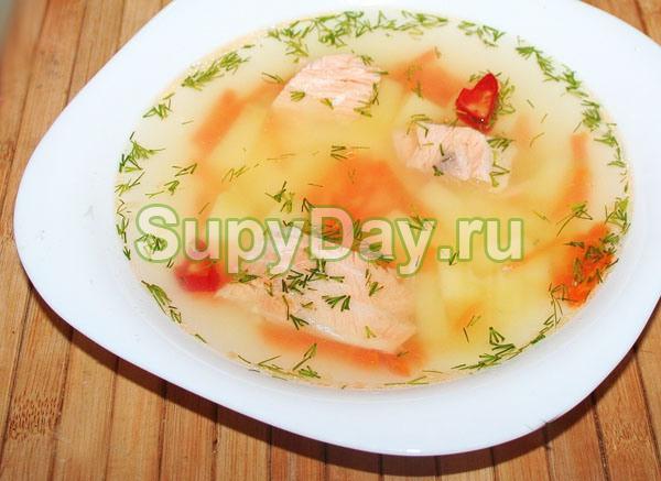 Рыбный суп из консервов горбуши со сливками