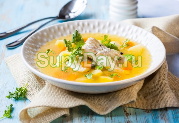 Рыбный суп из консервов горбуши с вермишелью
