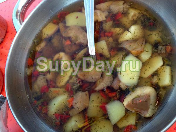 Как варить грибной суп из маслят