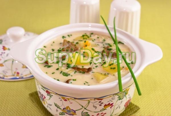 Грибной суп из шампиньонов с плавленым сыром – классический рецепт