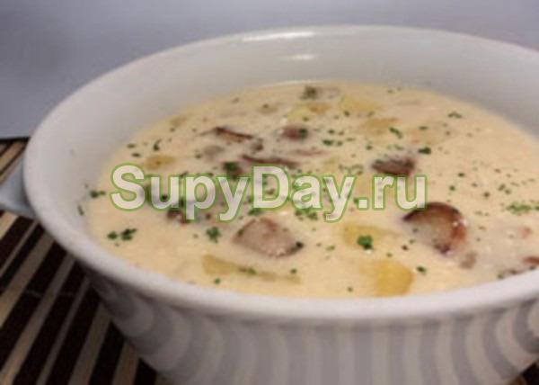 Грибной суп из шампиньонов с плавленым сыром и сушеными белыми грибами