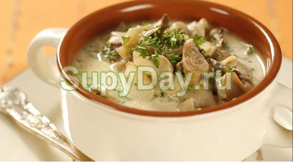 Простой суп по рецепту Грилькова